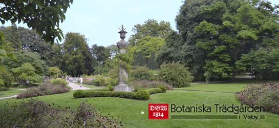 DBWs botaniska trädgård